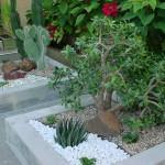 Jardins-de-Inverno