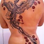 Tatuagem-de-Fenix-9