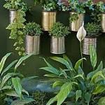como-fazer-um-jardim-vertical