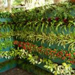 como-fazer-um-jardim-vertical-4