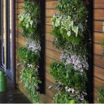 como-fazer-um-jardim-vertical-9