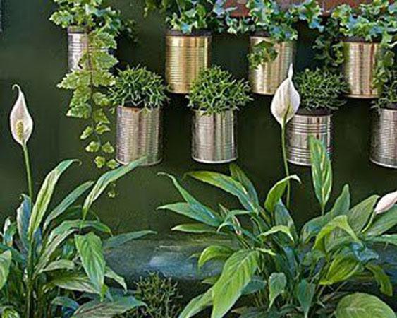 jardim vertical fotos : jardim vertical fotos: relacionado sobre Como Fazer um Jardim Vertical: Dicas, Fotos
