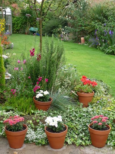 flores jardim externo: um pequeno jardim externo para dar beleza e colorido a residência