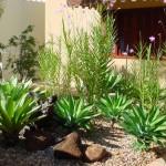 decoração-de-jardim-pequeno-externo-4