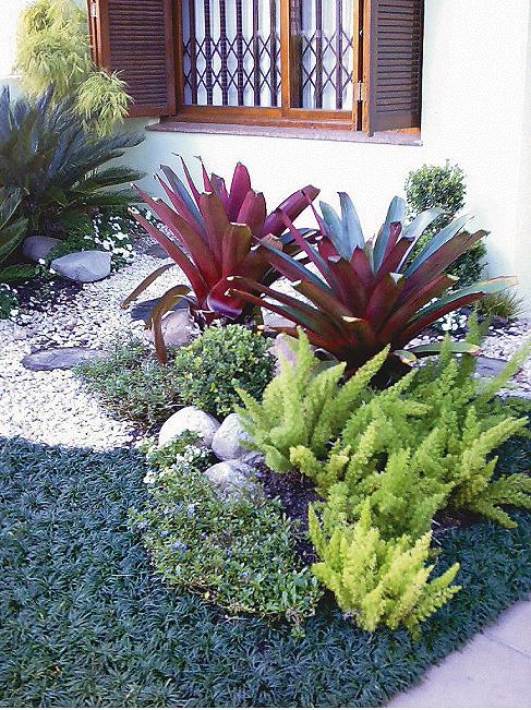 plantas jardim pequeno: jardim pequeno externo para que as plantas e flores vivam saudáveis