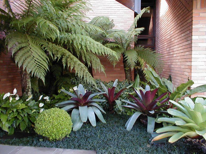 fotos jardins pequenos residenciais:Jardins Pequenos Bonitos E Baratos Pictures to pin on Pinterest