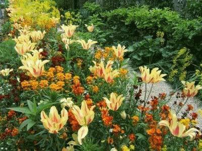 Dicas de Decoração para Jardins Residenciais – Fotos e Modelos