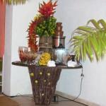 decoração-festa-havaiana8