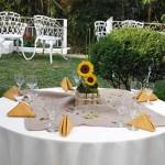 decoraçao-de-casamento-simples-4
