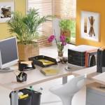 decoracao-de-ambientes-de-trabalho-4