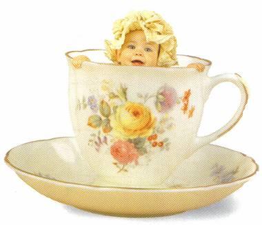 Dicas de como Fazer um Chá de Fraldas