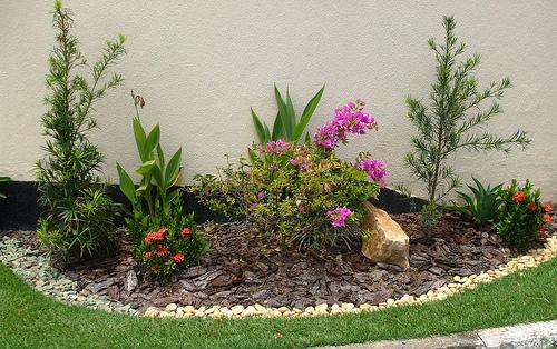 plantas jardim pequeno:jardim-pequeno-6