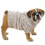 roupas-para-cachorro-no-inverno-7