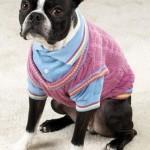 roupas-para-cachorro-no-inverno-8