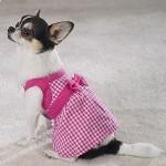roupas-para-cachorro-no-inverno-9