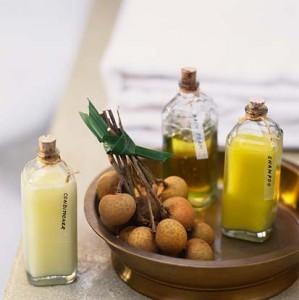 Shampoo Anti Caspa – Receita Caseira