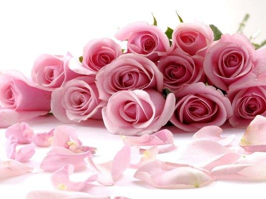 Significados das flores nos casamentos