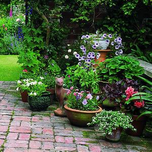 Decoração de Jardim Pequeno Externo – Fotos e Modelos