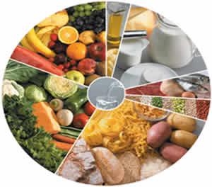 Dieta do Carboidrato para Emagrecer – Cardápio e Dicas